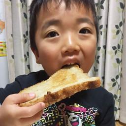【トロット, レビュー】自家製パンにプリンジャム
